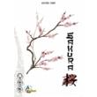 Sakura kártyajáték